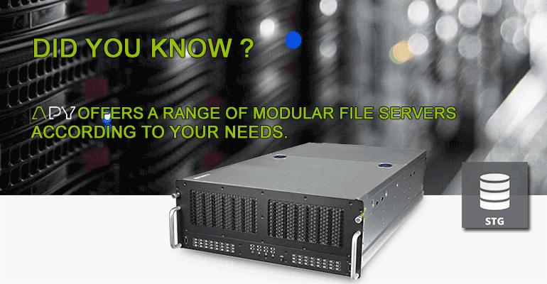storage server apy