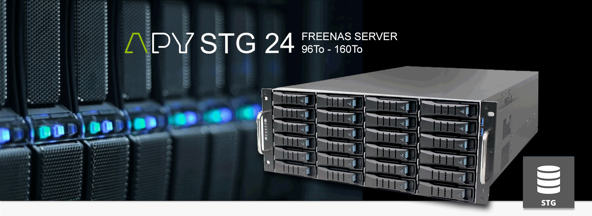 APY SERVEUR DE DONNEES FREENAS STG 24